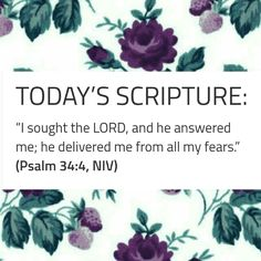Today's Scripture, Scripture For Today, Seek The Lord, Psalm 34