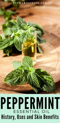 You may have heard about the therapeutic benefits of peppermint oil, but it's much more to it. Learn about the skin uses and many benefits of peppermint essential oil here. Facial For Dry Skin, Facial Skin Care, Peppermint Oil Benefits, Peppermint Oil Uses, Peppermint Patties, Pepermint Oil, Essential Oils For Sleep, Peppermint Tea, Healthy Skin