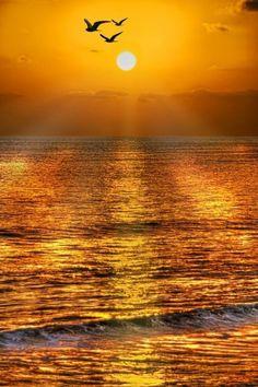 Beautiful sunset over the ocean Beautiful World, Beautiful Places, Beautiful Pictures, Amazing Sunsets, Amazing Nature, Amazing Art, Beautiful Sunrise, Beautiful Morning, Mellow Yellow