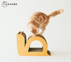 KAFBO Cat Scratching Furniture Snail shape S by KAFBO on Etsy