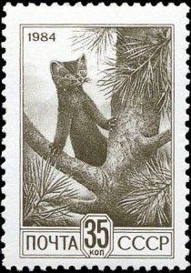 Sable on a Russian stamp