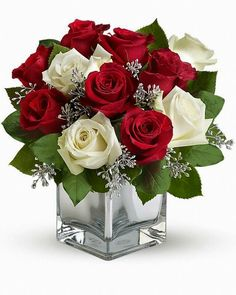 Send Christmas Flowers in Baltimore, MD from Raimondi's Flowers & Fruit Baskets for flower delivery in the Baltimore area. Raimondi's Flowers & Fruit Baskets in Baltimore offers a wide selection of Christmas Flowers. Winter Flower Arrangements, Rose Arrangements, Christmas Arrangements, Christmas Centerpieces, Floral Centerpieces, Christmas Tables, Valentine Flower Arrangements, Wedding Centerpieces, Christmas Flowers