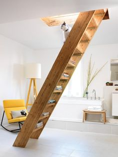 The WRONG way to use stairs as storage. These are already stepladder-steep, with no handrail. One slight misstep and you're a disconnected heap at the bottom. Probably not much of a worry if you're a cat, though.
