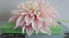 #petals #observerbooks #dahlia #flower
