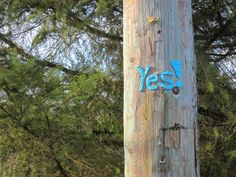 nirvYARNah: The answer to how is YES! Public art yarnbomb, 2015.