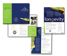 Longevity Consulting Branding|aMack Design: Anisha Blumenberg Portfolio, Blog
