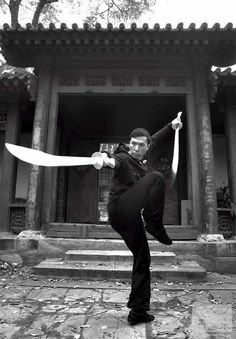 Donnie Yen. Martial arts