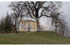 3/0086 Farm house - Montecreto | ITALY Magazine