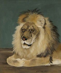 'Rota' the Lion William Nicholson, Maned Wolf, Jungle Life, Baby Gorillas, Social Realism, Fancy Costumes, Lion Art, Art Uk, Coat Of Arms