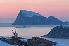 Sommarøy - Norway