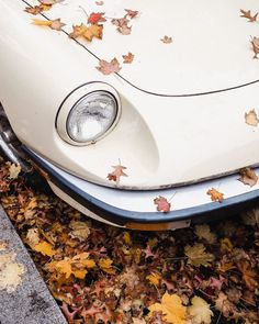 "habituallychic: ""(via Habitually Chic® Autumn Day, I Fall, Autumn Leaves, Autumn Photography, Creative Photography, Fall Tumblr, Seasons Of The Year, Jolie Photo, Vintage Vibes"