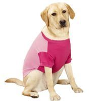 Guardian Gear Insect Shield Dog Tees