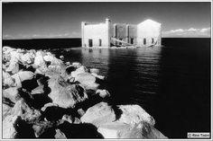 rino tosini immagini infrarossoi bianco nero
