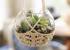 Ravelry: Knitted Terrarium Hanger pattern by Pam Powers