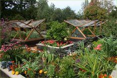 vegetable garden project: Vegetable garden designs