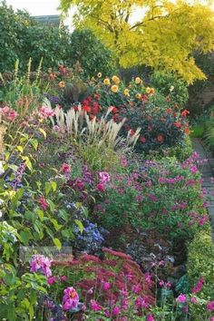 If you want to make a perennial cottage garden, these are the plants you should grow! cottage garden landscaping The Best Perennial Plants for Cottage Gardens Fairytale Garden, Dream Garden, Amazing Gardens, Beautiful Gardens, Cottage Garden Plants, Cottage Gardens, Backyard Cottage, Best Perennials, Beautiful Flowers Garden