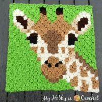 My Hobby Is Crochet: FREE CROCHET PATTERNS & TUTORIALS C2c Crochet, Crochet Blocks, Crochet Chart, Free Crochet, Crochet Giraffe Pattern, Crochet Applique Patterns Free, Crochet Blanket Patterns, Crochet Organizer, Crochet Tablecloth