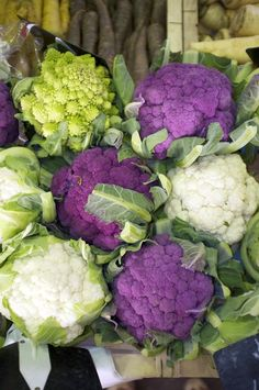 A Variety of Cauliflowers