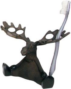 North Ridge Toothbrush Holder