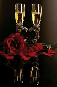 Champagne and Roses - - Yahoo Image Search Results