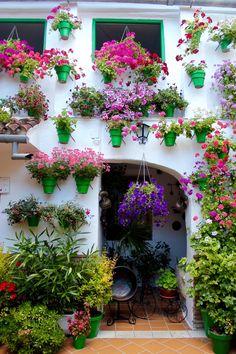 Patios de Córdoba | Spain (by Nacho Coca) Find me on Instagram