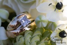 Wedding Ring Photography  #Diamonds #weddingrings #EventDesignByMariannaIdirin  www.mariannaidirin.com