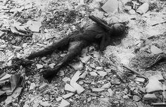Karma - Hiroshima Japan  Hopefully the world will never see anything as evil as the Japanese empire ever again.