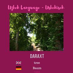 "Uzbek ""tree""; Usbekisch ""Baum"" More information on instagram or on my blog www.sariq-qiz.com #uzbek #usbekisch #uzbeklanguage #usbekischesprache #languages #learnuzbek #lerneusbekisch Languages, Instagram, Tree Structure, Idioms"