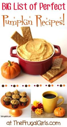BIG List of Perfect Pumpkin Recipes! ~ from TheFrugalGirls.com ~ cozy up this Fall and capture the flavors of the season with these easy, delicious Pumpkin Recipes! #pumpkins #thefrugalgirls