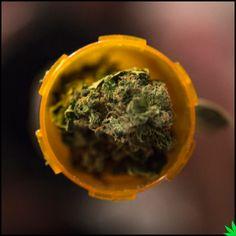 Daily meds #weed #marijuana #cannabis #mmj #medical marijuana