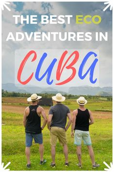 Top ecotourism and eco-adventures in Cuba. Travel Viñales, eco-lodges, and explore authentic Cuba. Visit Cuba, Responsible Travel, Sustainable Tourism, Cuba Travel, Cultural Experience, Lodges, Travel Around The World, Traveling By Yourself, Travel Inspiration