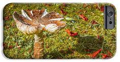 #Autumn #Mushroom #iPhone 6 #Case