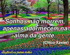 Acesse esta e outras mensagens de Chico Xavier, reflexões, orações (clique na imagem)