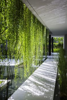 Simple and serene outdoor living wall