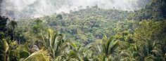 #Giamaica: guide e consigli utili per il viaggio - Lonely Planet Italia