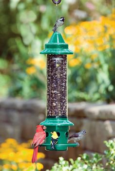 These Squirrel Buster bird feeders really work.   They're the only ones I have found that keep my militant squirrels out!