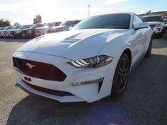 Mustang speed dating tréfa