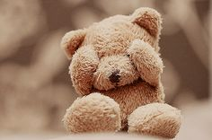 Teddy Bear Cuteness