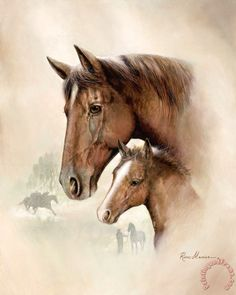 ruane manning race horse i
