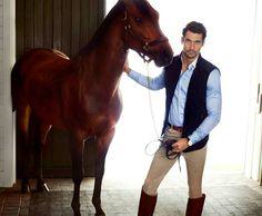 www.pegasebuzz.com   Equestrian fashion : David Gandy and Carolyn Murphy for Massimo Dutti, fall 2013