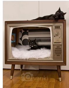 New Cat Furniture Diy Apartments Thoughts Ideas Cool Cat Beds, Diy Cat Bed, Cool Cats, Cat House Plans, Cat House Diy, Lit Chat Diy, Diy Dog Blankets, Homemade Cat Beds, Kitten Beds