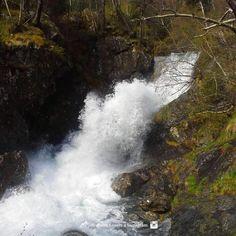 Salt del Riu Pollós Andorra, Waterfalls, Salt, Outdoor, Outdoors, Salts, Outdoor Games, The Great Outdoors, Falling Waters