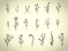 Image result for cute little flower drawings