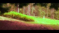 Busteni  valea cerbului   Poiana izvoarelor stil cinema