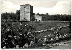 Mantova - CARTOLINA DI MANTOVA, ROCCA DI SPARAFUCILE