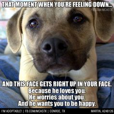 Just one of the many WONDERFUL things about having pets ❤ #mcaspets #dogs