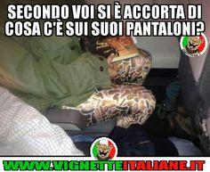 * Pantaloni sconci (www.VignetteItaliane.it) Illusion, Vignettes, Comedy, Lol, Cool Stuff, My Love, Memes, Funny, Diys