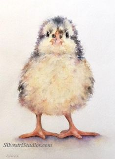 """""""Chicklet"""", watercolor baby chick painting by animal artist Teresa Silvestri.  Original sold, but prints & cards available.  Photo reference thanks to Cindy Fry."""