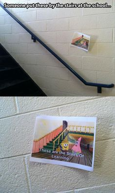 Stairs of learning // funny pictures - funny photos - funny images - funny pics - funny quotes - spongebob Funny Shit, Funny Pins, Funny Cute, The Funny, Funny Memes, Jokes, Funny Stuff, Random Stuff, Spongebob Memes