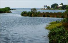 For My Class: Babe Ruth's Aripeka Bay... Hernando County, FL (Fl  West)